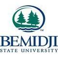 Bemidji State University – 173124 logo