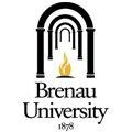 Brenau University – 139199 logo