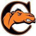 Campbell University – 198136 logo