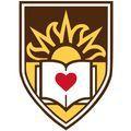 Lehigh University – 213543 logo