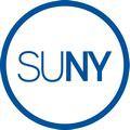 SUNY at Binghamton – 196079 logo