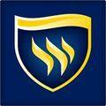 Texas Tech University – 229115 logo